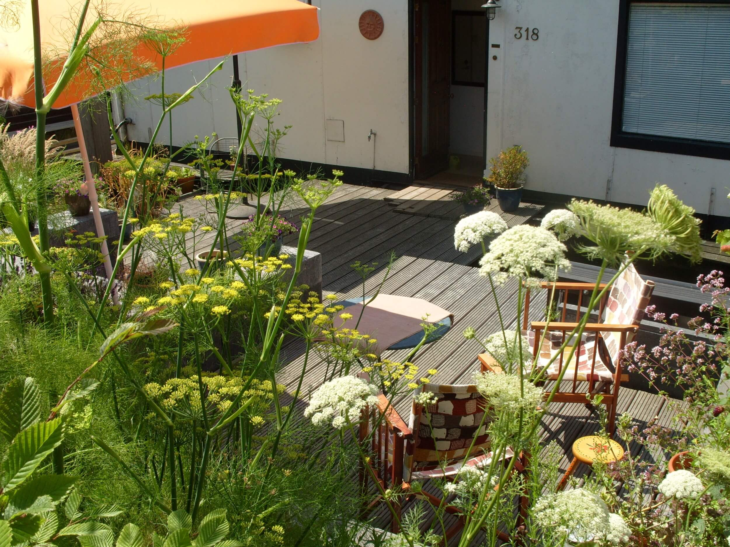 De Tuin - Houseboat Harmony - Bed & Breakfast Utrecht (1)